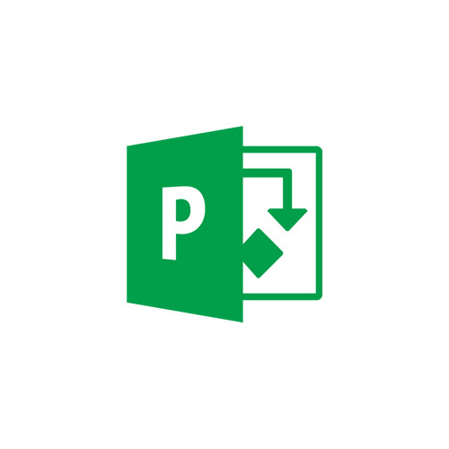 Подписка Microsoft Project Online Single OLP 12 мес., S5Z-00003